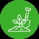 beguverd-plantacions